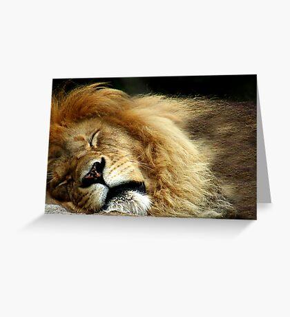 The Lion Sleeps Greeting Card