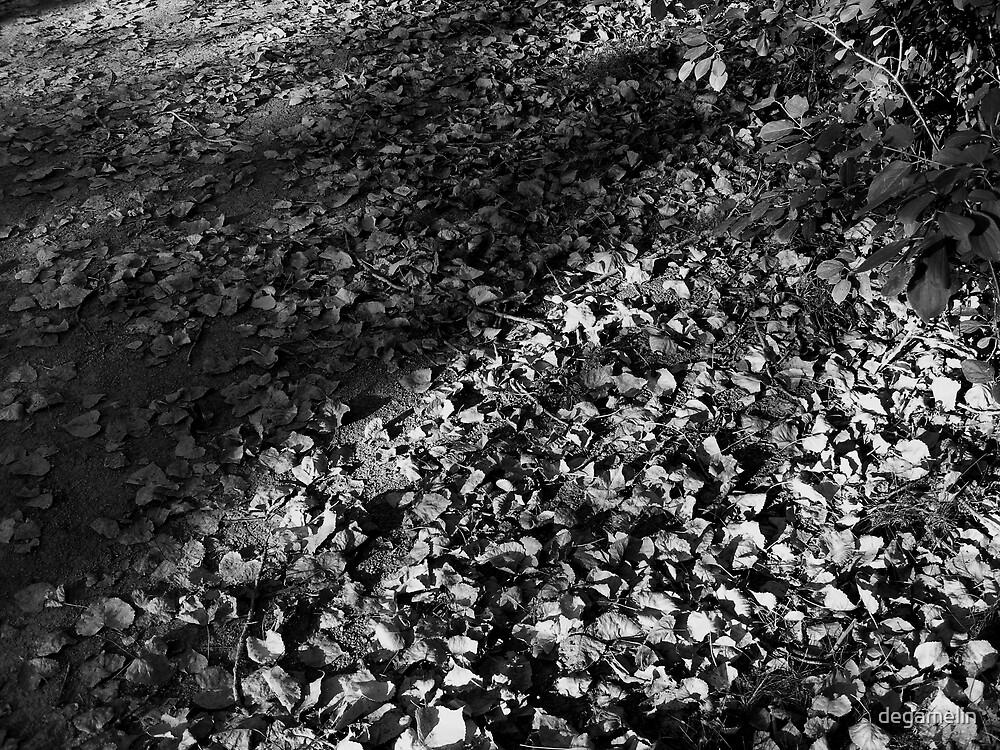 autumn falls  by degamelin