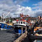 Local Fishing Boats - Lyme Regis by Susie Peek