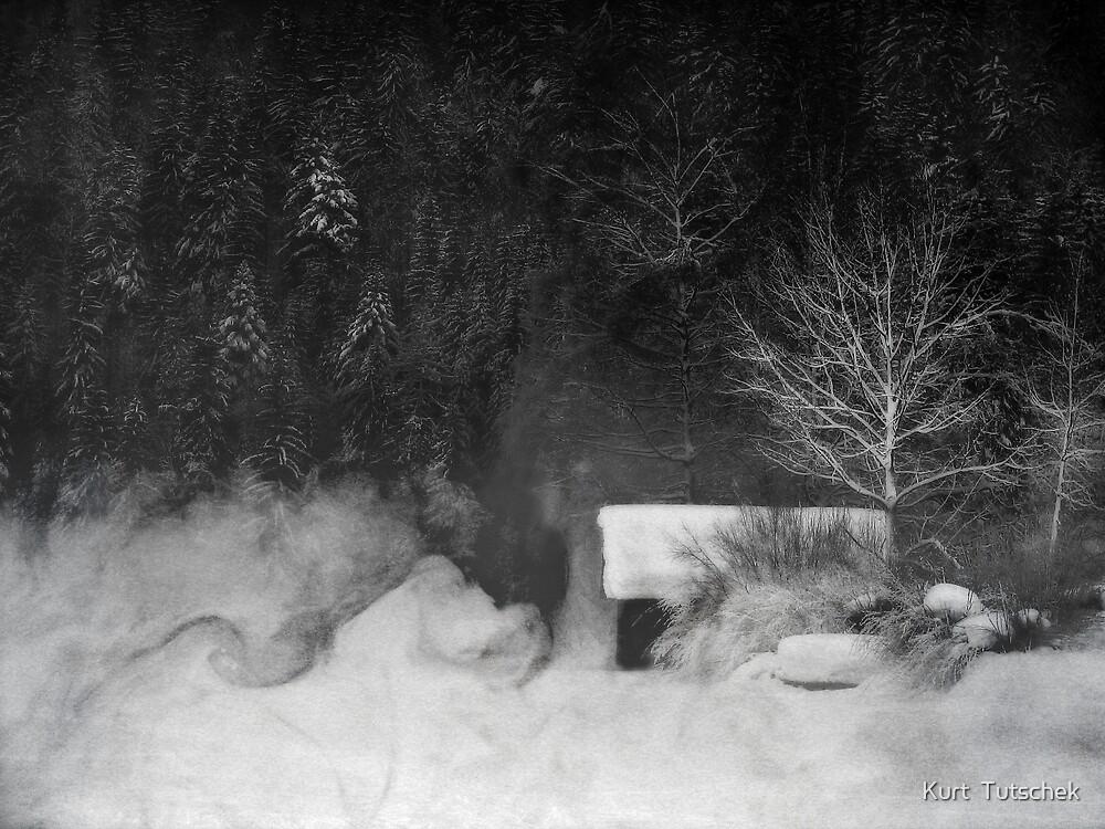 The hut by Kurt  Tutschek