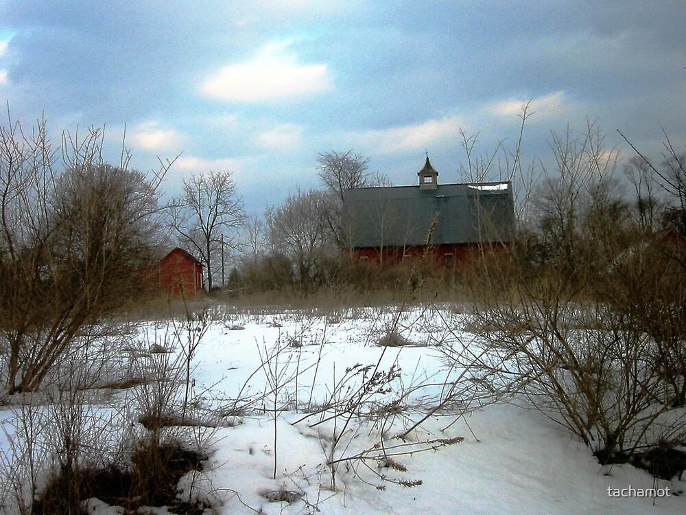 WINTER CHURCH by tachamot