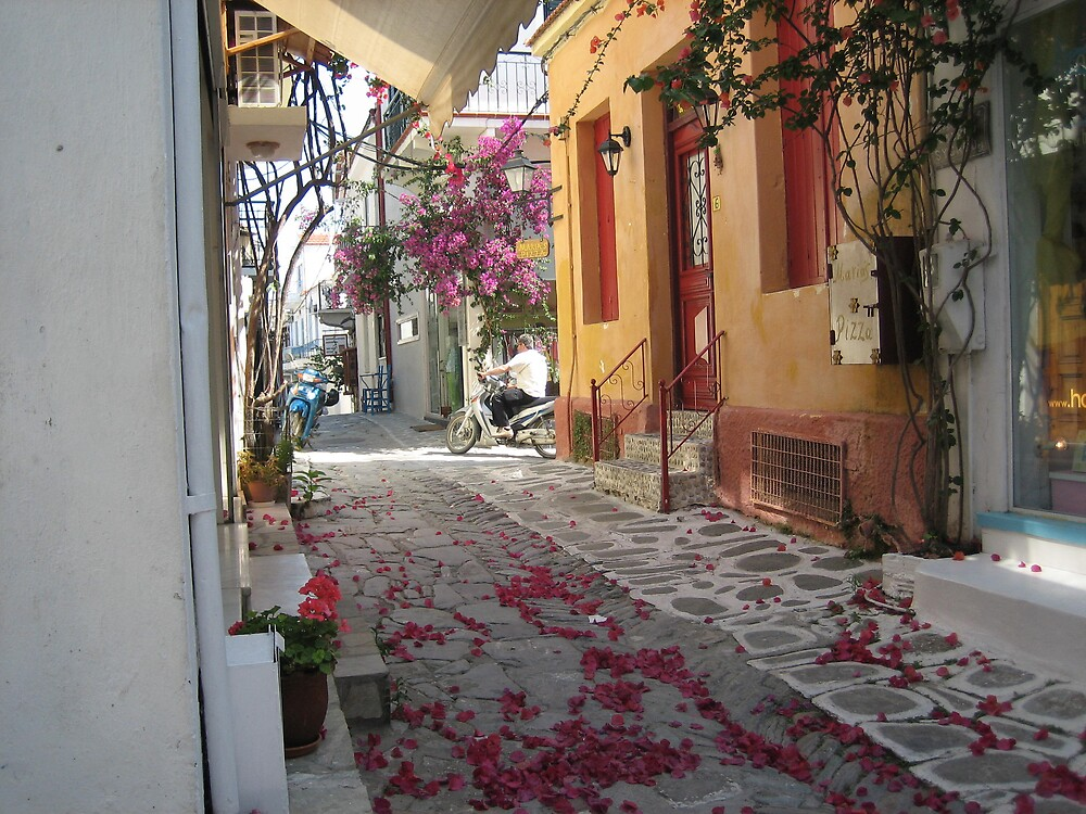 Fallen petals on a Skiathos street by maultby40