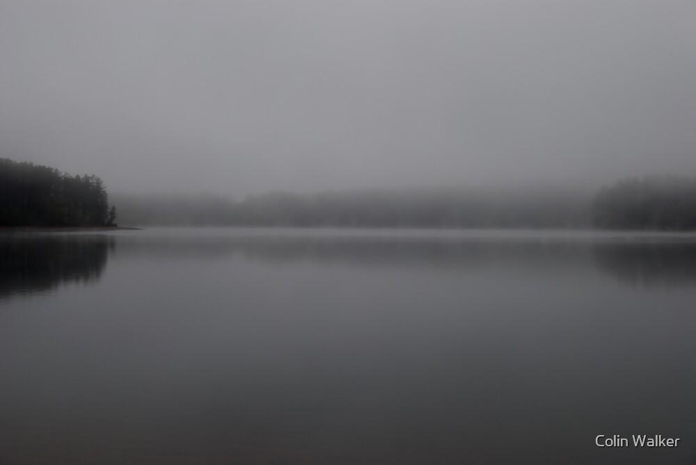 Monochrome Day 2 by Colin Walker