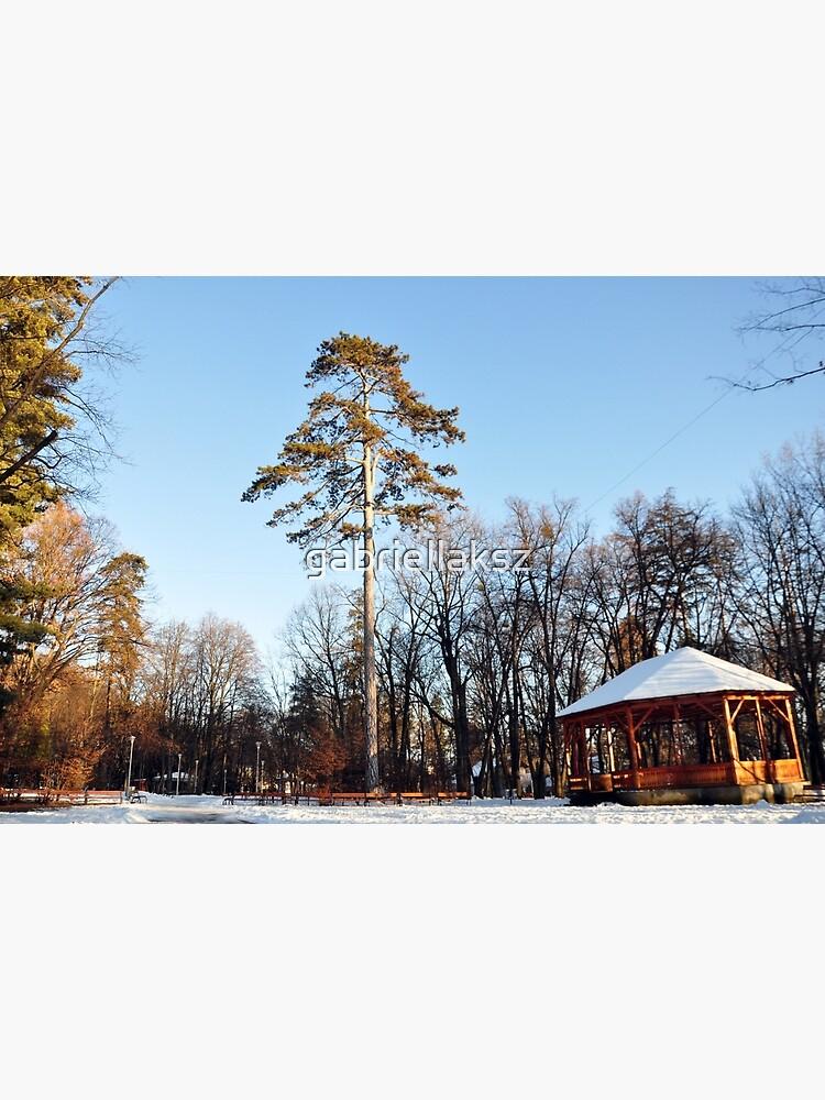 Winter tale by gabriellaksz
