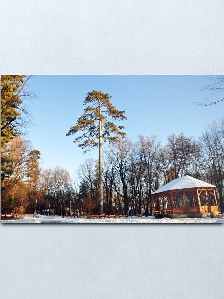 Alternate view of Winter tale Metal Print