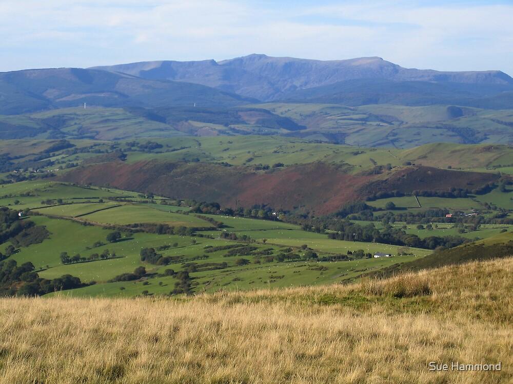 Mountains by Sue Hammond