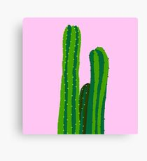 plants on pink Canvas Print