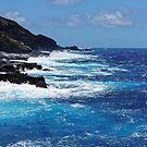 Honolulu Blue by Dan Bronish