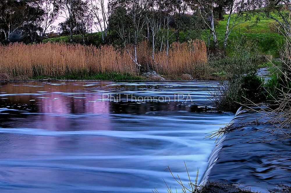 """Velvet Evening"" by Phil Thomson IPA"
