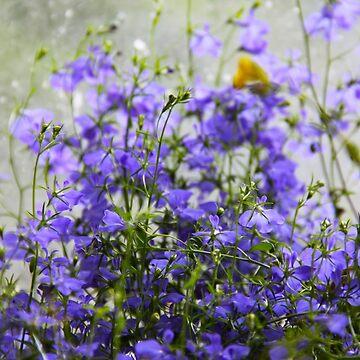 Purple Blue Perennial  by penneyknightly