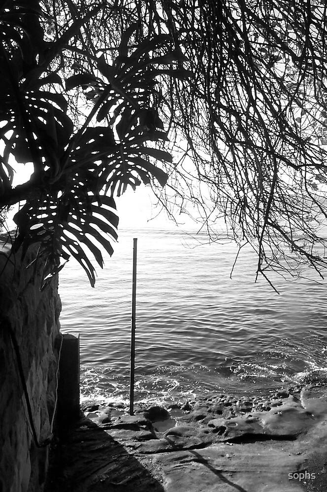 Soph's Secret Sydney No. 1 by sophs