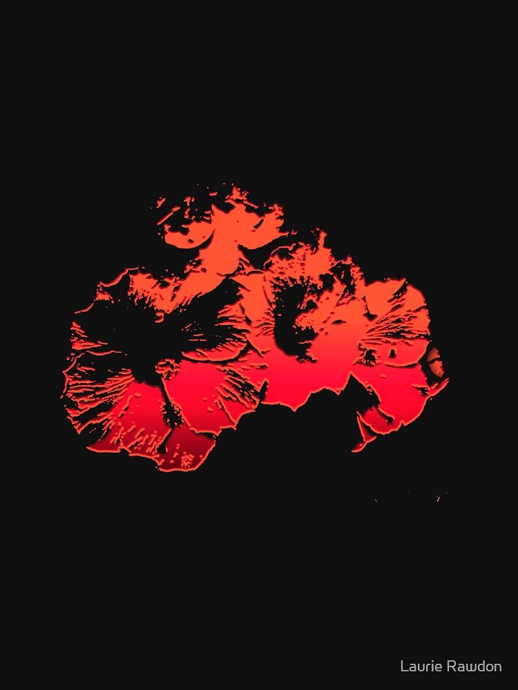 Hibiscus by lrawdon