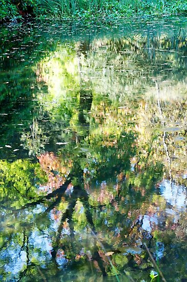 Monet at Stourhead? by ColinKemp