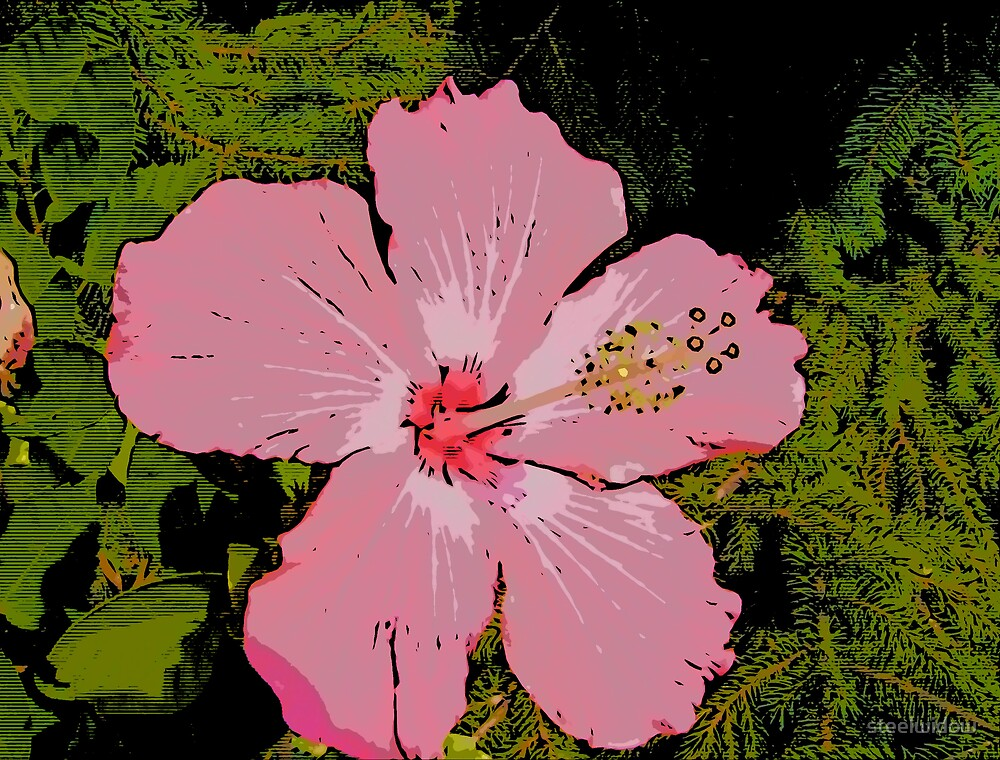 Comic Abstract Big Pink Bloom by steelwidow