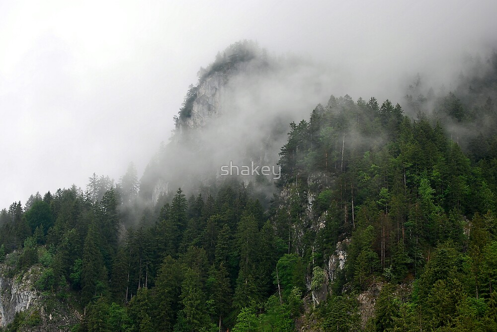 Mountain mist by shakey