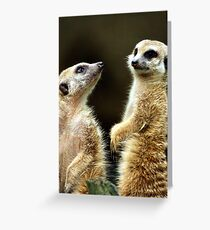 Did you hear that? Greeting Card