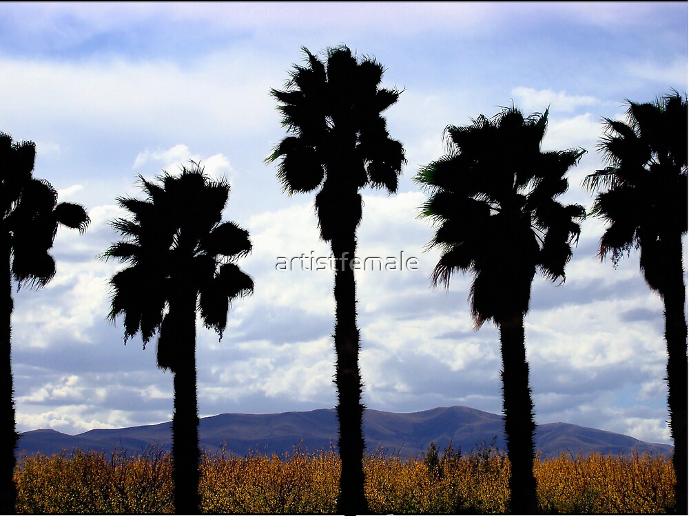 The Palms by artistfemale