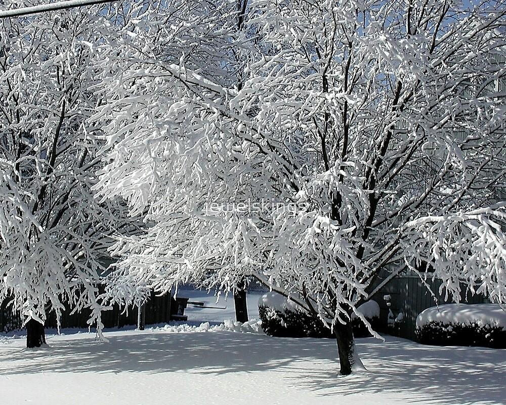 Winter Art by jewelskings