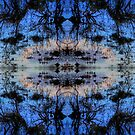 Neural Swamp by James Poyner