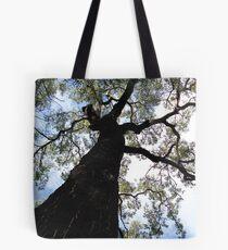Eucalypt Tote Bag