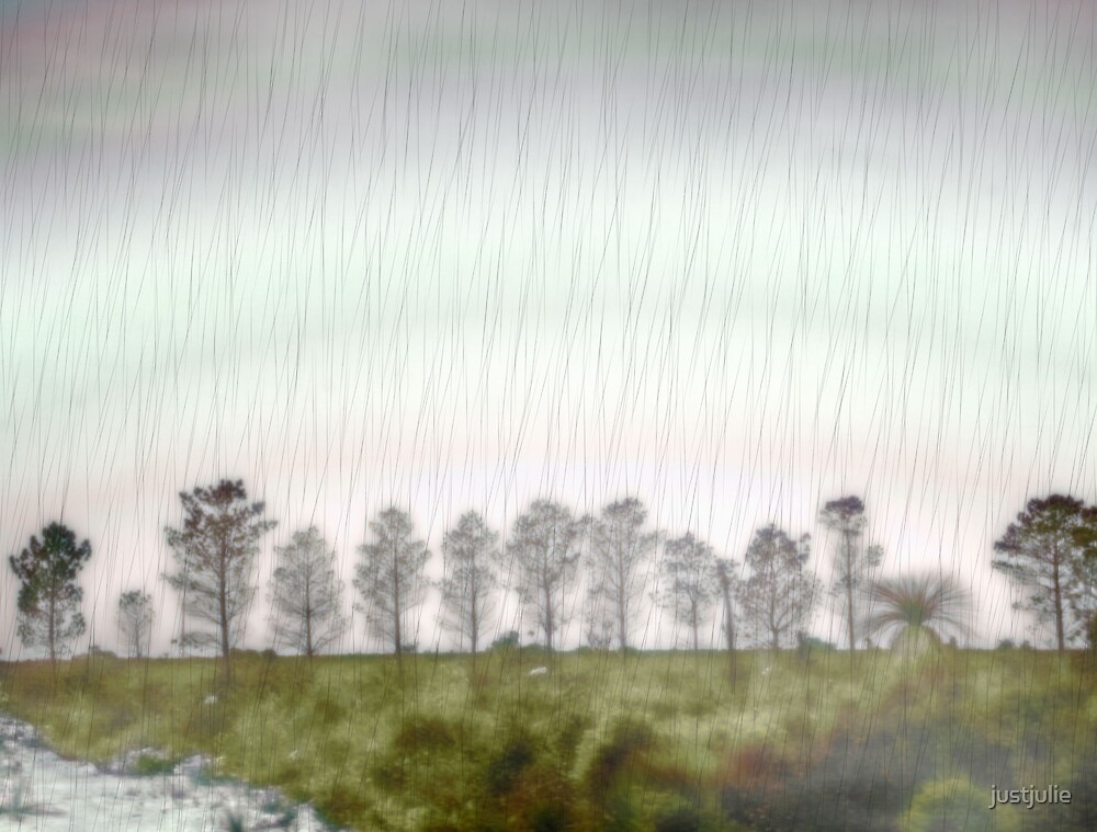 Rain trees by justjulie
