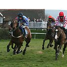 All the fun of the races by PeterHolroyd