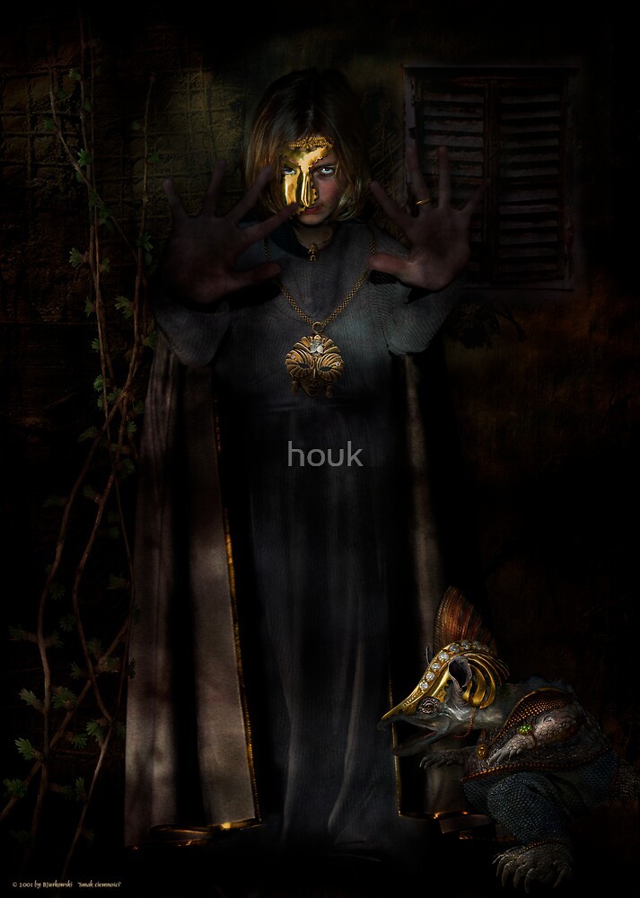 taste of darkness by houk