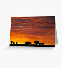 Glorious Grazing Greeting Card