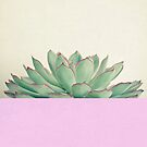 Succulent Dip by Cassia Beck
