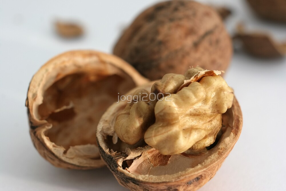 Simply Walnuts by joggi2002