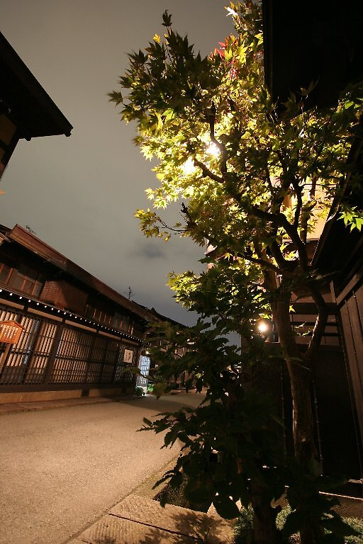 Takayama night vision by Trishy
