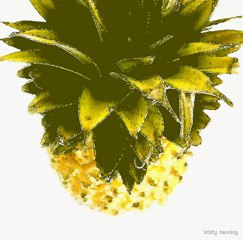 prickely fruit by kristy  kenning