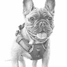 french bulldog drawing by Mike Theuer