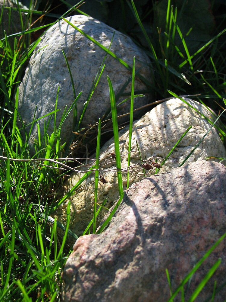 rocks in the grass by ashleymaiwoo