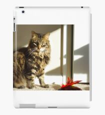 Radagast and toy iPad Case/Skin