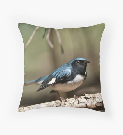 Black Throated Blue Warbler Throw Pillow