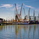 Shrimp Boats of Shem Creek by TJ Baccari Photography
