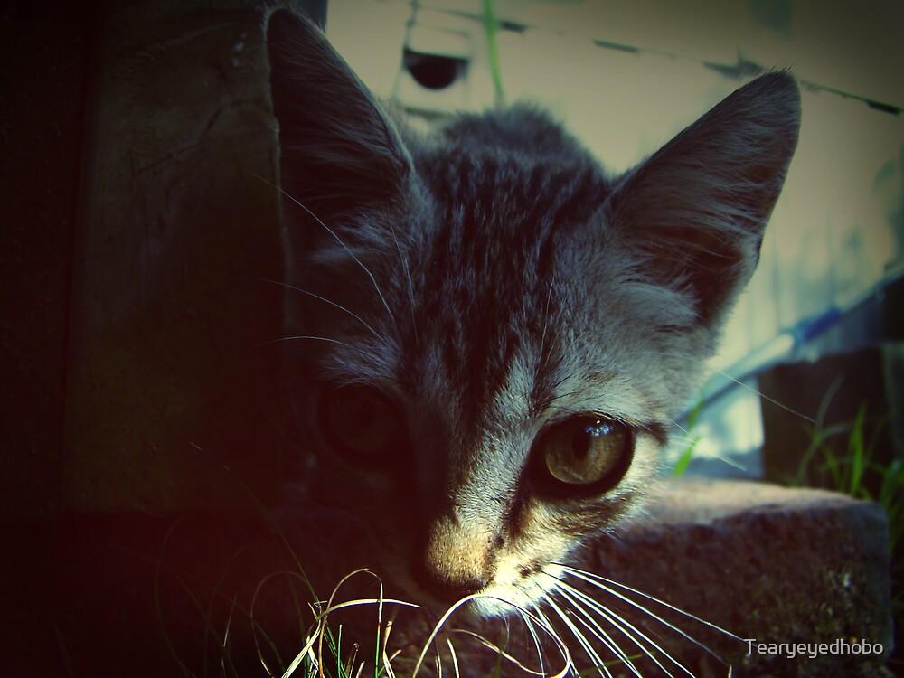 Cutie. by Tearyeyedhobo