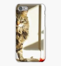 Radagast and toy iPhone Case/Skin