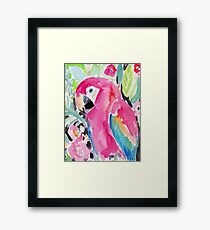 SCARLET THE MACAW Framed Print