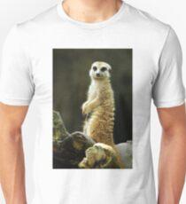 Hey You =) T-Shirt