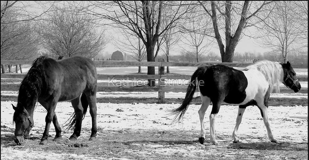 Horses In Winter by Kathleen Struckle