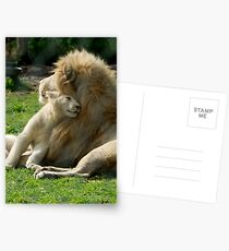 Father and Son Postcards