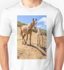 Wild Horse with Foal at Rano Raraku Crater - Rapa Nui - Easter Island T-Shirt