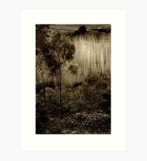 Poplars near Vaughan Art Print