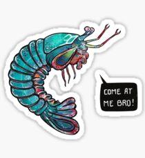 Mantis Shrimp Stickers | Redbubble