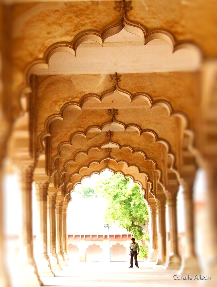 Agra Fort - India by Coralie Alison