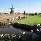 Kinderdijk, Netherlands by Patricia127