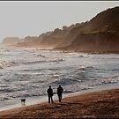 Walk on the beach by John Lines