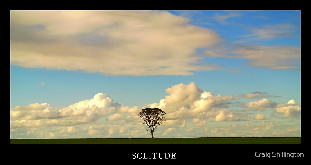 Solitude by Craig Shillington